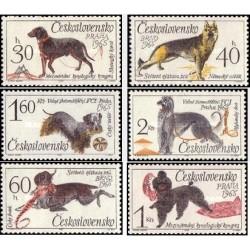 6 عدد تمبر سگها - چکوسلواکی 1965