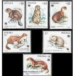 6 عدد تمبر خز داران حفاظت شده - لهستان 1984