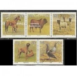 5عدد تمبر حیوانات - آفریقای جنوبی 1991