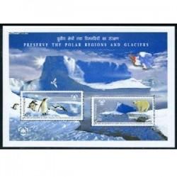 مینی شیت حفاظت از یخهای قطبی- هندوستان 2009