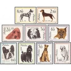 9 عدد تمبر سگها -  لهستان 1963