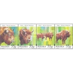 4 عدد تمبر حیوانات حفاظت شده - بوفالو - لهستان 1996