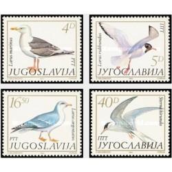 4 عدد تمبر پرندگان - مرغهای دریایی - یوگوسلاوی 1984