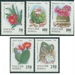 5 عدد تمبر گلهای کاکتوس - روسیه 1994