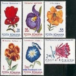 6 عدد تمبر گلها - رومانی 1971