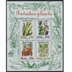سونیرشیت گلها - سیسکی - آفریقای جنوبی 1993