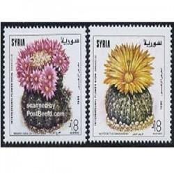 2 عدد تمبر گل کاکتوس - سوریه 1996 Syrian Arab