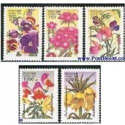 5 عددتمبر گلهای باغچه روسیه 1996