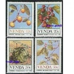 4 عدد تمبر میوه ها - وندا - آفریقای جنوبی 1985