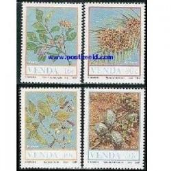 4 عدد تمبر میوه ها - وندا - آفریقای جنوبی 1987