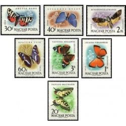 7 عدد تمبر پروانه - مجارستان 1959