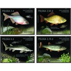 4 عدد تمبر گونه های ماهی در معرض انقراض - لهستان 2016