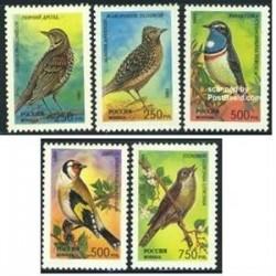 5 عدد تمبر پرندگان آوازخوان - روسیه 1995