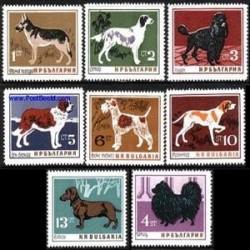 8 عدد تمبر سگها - بلغارستان 1964
