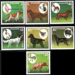 7 عدد تمبر سگهای شکاری - بلغارستان 1985