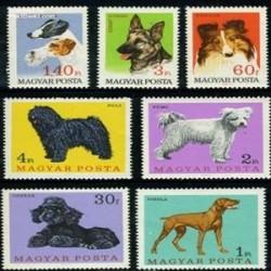 7 عدد تمبر سگها - مجارستان 1967
