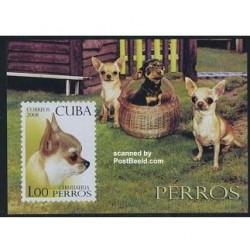 سونیرشیت سگها - کوبا 2008