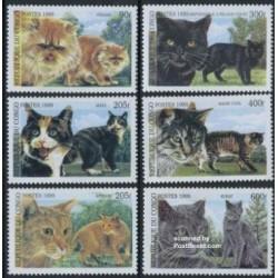 6 عدد تمبر گربه ها - گربه ایرانی -  کنگو 1999