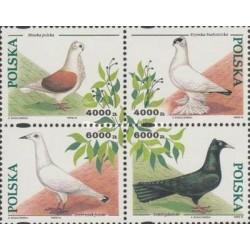 4 عدد تمبر کبوترهای دست آموز  - لهستان 1994