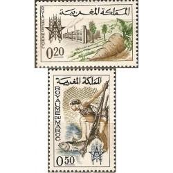 2 عدد تمبر نجات از گرسنگی - مغرب 1963