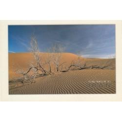 کارت پستال - ایرانی- چشم انداز ایران - کویر یزد