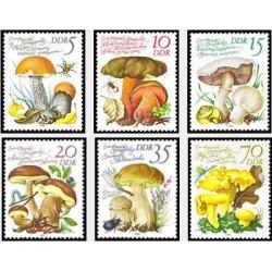 6 عدد تمبر قارچها - جمهوری دموکراتیک آلمان 1980
