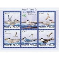 مینی شیت پرندگان - چلچله ها - کومور 2009 قیمت 11.64 دلار