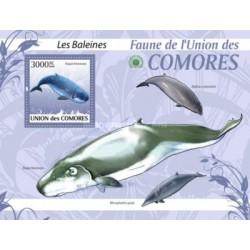 سونیرشیت پستانداران - والها - کومور 2009 قیمت 13.97 دلار