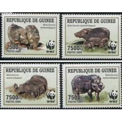 4 عدد تمبر WWF -  گراز وحشی - B - جمهوری گینه 2009 قیمت 11 دلار