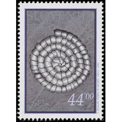 1 عدد تمبر فسیلهای دره دولزان - اسلوونی 1993