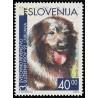 1 عدد تمبر مسابقات جهانی سگهای آموزش دیده  - اسلوونی 1992