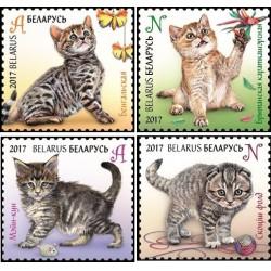 4 عدد تمبر فیلاتلی کودکان - بچه گربه ها - بلاروس 2013 قیمت 4.2 دلار