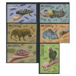 6 عدد تمبر حیوانات اهلی - کوبا 2013