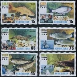 6 عدد تمبر فرهنگ آب - ماهیها - کوبا 2008