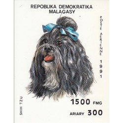 سونیرشیت سگها  - ماداگاسکار 1991