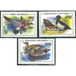 3 عدد تمبر اردکها - روسیه 1994