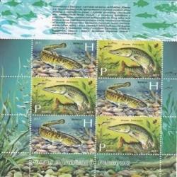 مینی شیت ماهیها - بلاروس 2011
