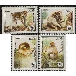 4 عدد تمبر گونه های در معرض انقراض - میمون بربری - WWF - الجزائر 1988